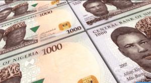 Money In Nigeria
