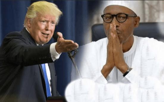 I'm Not lifeless Buhari Replies President Trump